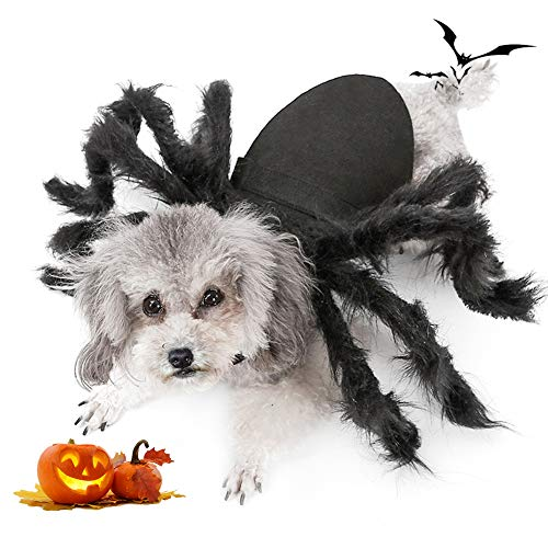 Spider Dress Up Costumes (Spider Dog Costume, Pet Halloween Cosplay Costumes for Cat Dog, Funny Party Dress up Accessories)