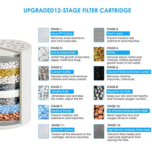 High Output 15-Stage Shower Filter Reduces Dry Itchy Skin,  Dandruff,Eczema,and Dramatically Improves The Condition of Your Skin,Hair  and Nails (Style