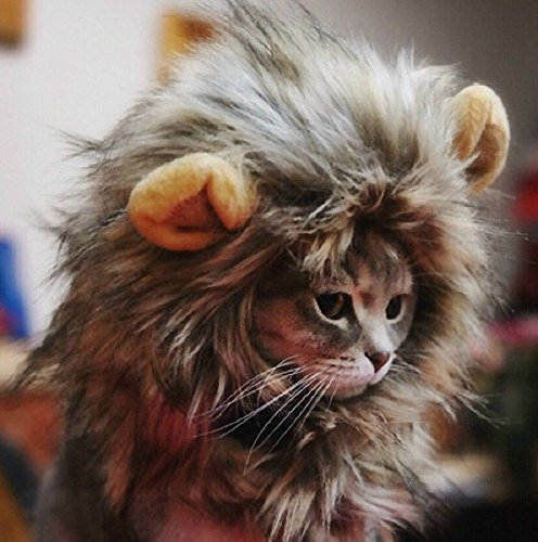 HTKJ Lion Mane Cat/Dog Costume Cute Adjustable Washable Pet Wig Hat for Cat or Small Dog Clothes Dress up Halloween Christmas Easter Festival Party Activity (Cat-Multi)