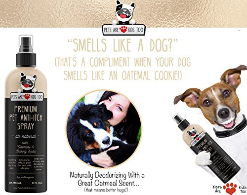 Premium Pet Anti Itch Deodorant Spray & Scent Freshener! ALL NATURAL & Hypoallergenic! Soothes Dogs & Cats Hot Spots, Itchy, Dry, Irritated Skin! Reduces Odor, Allergy Relief! Smells Amazing! (1 Pack)