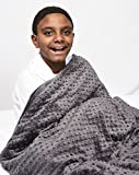 Creature Commforts 15 lb Weighted Blanket (for 140lb individual) 40