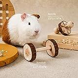 JanYoo Hamster Chew Toy,Rabbit Lava Block+Grass