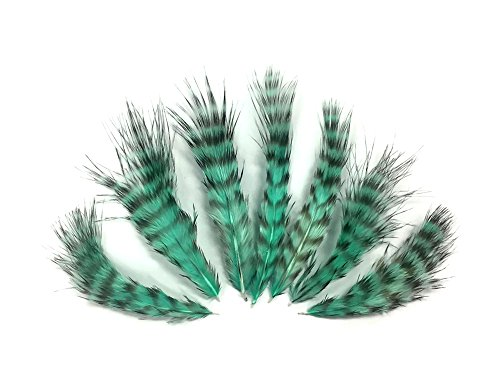 Moonlight Feather, Craft Feathers -1 Dozen - Mint Green Grizzly Rooster Chickabou Fluff - Delivery 1pm Special Before