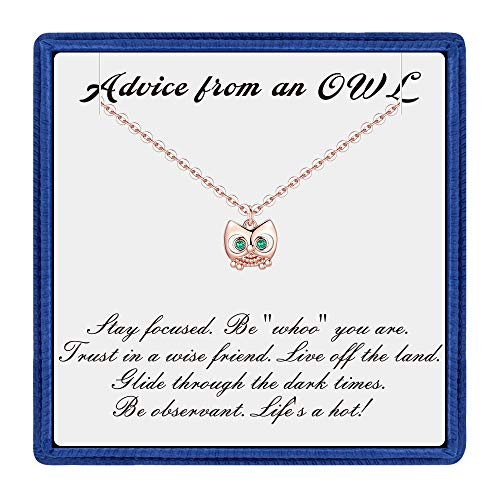 (PAERAPAK Graduation Gifts for Her - Rose Gold Cubic Zirconia Owl Charm Necklace Inspirational Necklace with Message Card Best College Graduation Gifts for Women )
