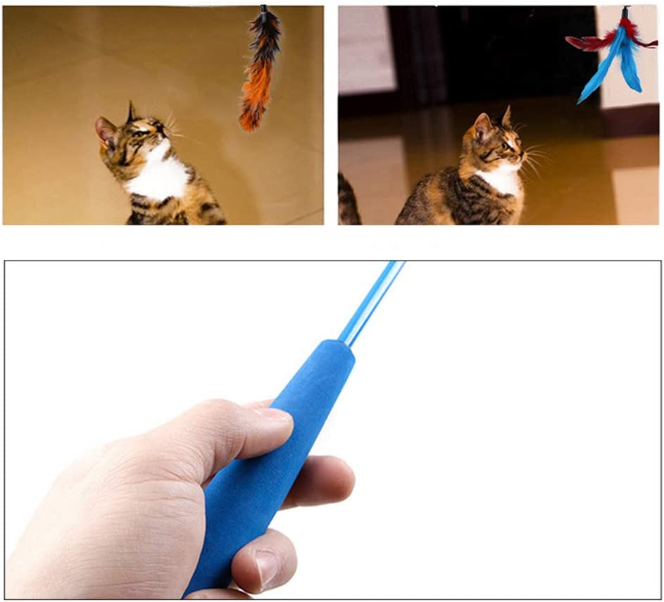Balacoo Cat Feather Toy Interactive Teaser Wand Toys 11Pcs Assorted Replacement Refill Catcher Chasing Toys Set for Kitten Doggie