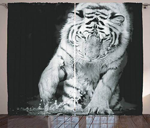 Ambesonne Tiger Curtains, Black and White Image of Large Cat Playing with Water Cool Animals Fun Hunter, Living Room Bedroom Window Drapes 2 Panel Set, 108 W X 108 L Inches, Black Light Grey For Sale