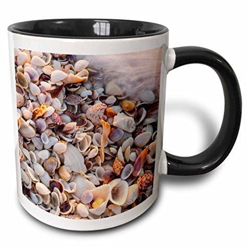 3dRose mug_190163_4 Incoming Surf and Seashells on Sanibel Island, Florida, USA Two Tone Black Mug, 11 oz, - Florida Outlets Sanibel