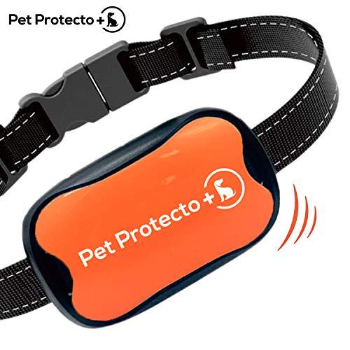 Pet Protecto+ Bark Collar [New Version] Humanely Stops Barking with Sound and Vibration. NO Shock, Harmless and Humane. Small Dog Bark Collar, Medium Dog Bark Collar