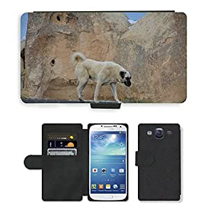 PU LEATHER case coque housse smartphone Flip bag Cover protection // M00111969 Perro Perros Animal Kangal Rock Road // Samsung Galaxy S3 S III SIII i9300