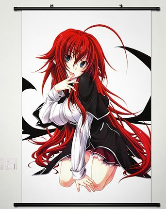 Wall Scroll Poster Fabric Painting For Anime High School DxD