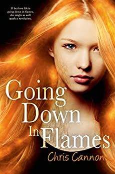 Going Down in Flames by [Cannon, Chris]