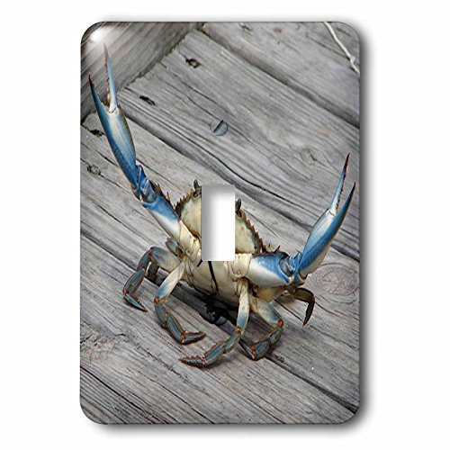 3dRose lsp_63150_1 Blue Crab Single Toggle -