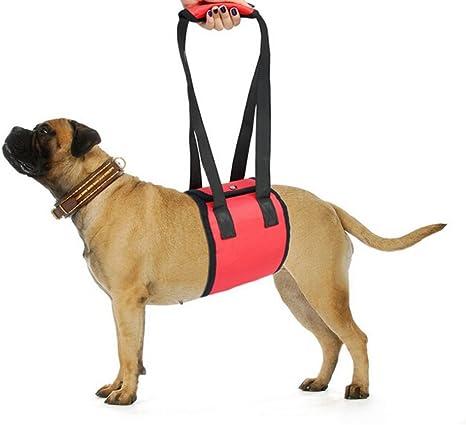 Arnés de apoyo para perros UEETEK elevación soporte arnés ayuda ...