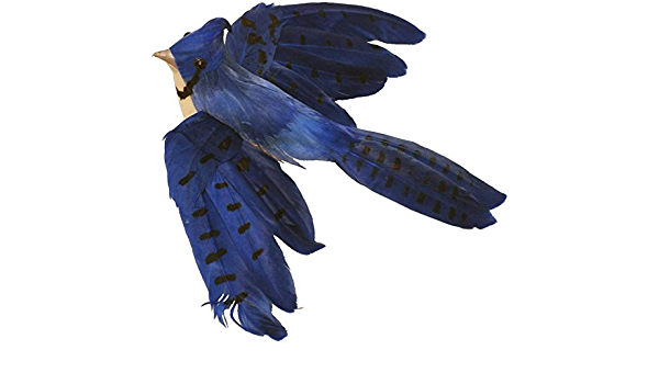 BLUE JAY QUILL,WING FEATHERS,FLY TYING ART CRAFT  NATIVE ART EURASIAN 30