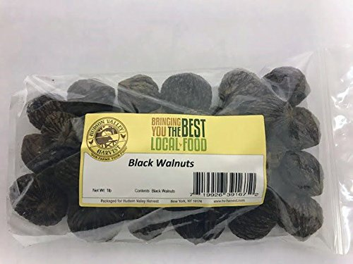 Hudson Valley Harvest Whole Black Walnuts, 1lb