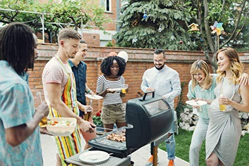 WYJBD Bâton de Guimauve Barbecue, bâton de Barbecue en Acier Inoxydable, Une Fourchette de Barbecue Extensible, Broche de Barbecue, 12PCS, Rotation télescopique