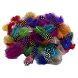 Plentree 50Pcs Mixed Color Simulation Feather F2Y1