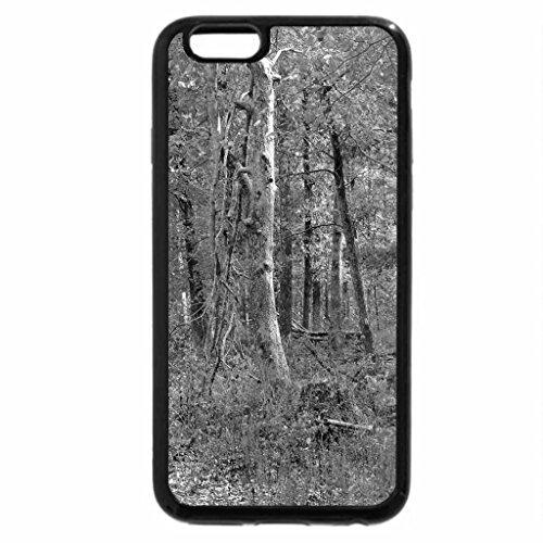 iPhone 6S Plus Case, iPhone 6 Plus Case (Black & White) - The Wild, Wild Woods
