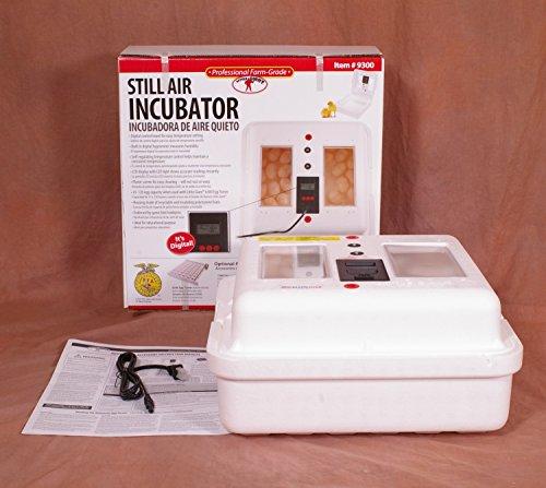 (LITTLE GIANT Still-Air Incubator, Holds 41 Large Chicken Eggs Or 120 Bantam/Quail Eggs, 9300, Lot of 1)