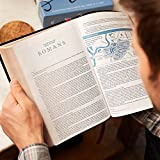 NASB, MacArthur Study Bible, 2nd Edition, Premium
