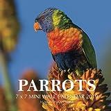 Parrots 7 x 7 Mini Wall Calendar 2019: 16 Month Calendar