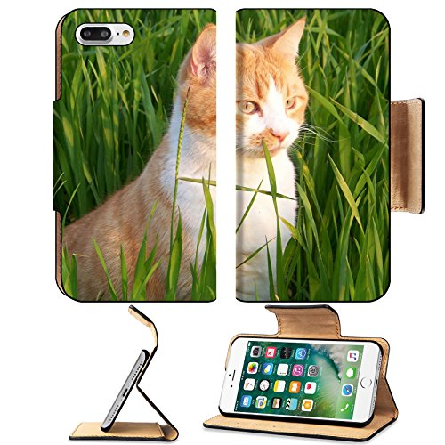 Luxlady Premium Apple iPhone 7 Plus Flip Pu Leather Wallet Case iPhone7 Plus 34642489 white and orange male cat in the - City Park Mal