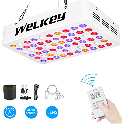 (Welkey Plus Remote Control Series 600W LED Grow Light Dual Chips Grouping,Timer,Temperature and Humidity Monitor Full Spectrum Growing Lamp for Hydroponic Indoor Plants Veg and Flower(10W LEDs 60PCS))