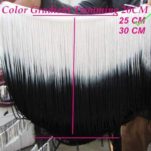 Laliva 2 Yards/Lot Dip Dye Ombre Fringe Tassel Rayon Latin Dress Macrame Trimming Loop Bottom Lace Gradient 25-30CM - (Color: 25CM White Black)