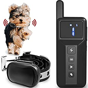 Enrivik Small Size Dog Training Collar with Remote – Perfect for Small Dogs 5-15lbs – Waterproof & 1000 Feet Range