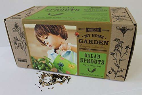Natural Green Seeds Sprouts Garden Kit| Organic sprout Seeds non-GMO certified| DIY Gardening set Including Planter and Compressed Soil by Natural Green Seeds