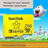 SanDisk 256GB microSDXC-Card, Licensed for