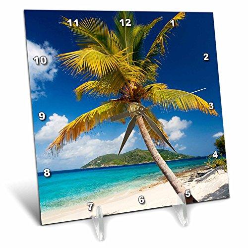 3D Rose Palm Tree on Sandy British Virgin Islands Desk Clock, 6