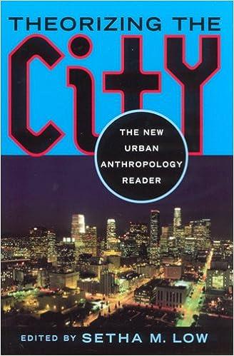 THEORIZING THE CITY PDF