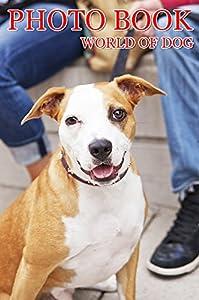PHOTO BOOK WORLD OF DOG VOL.29: Photography, Photo Book
