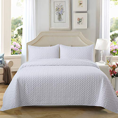 - Soul & Lane On The Dot 100% Cotton Polka Dot Printed 2-Piece Quilt Set (Twin) | with 1 Sham Pre-Washed Reversible Machine Washable Lightweight Bedspread Coverlet