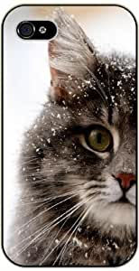 For Samsung Galaxy S3 I9300 Case Cover Snowed cat - black plastic case / Nature, Animals, Places Series