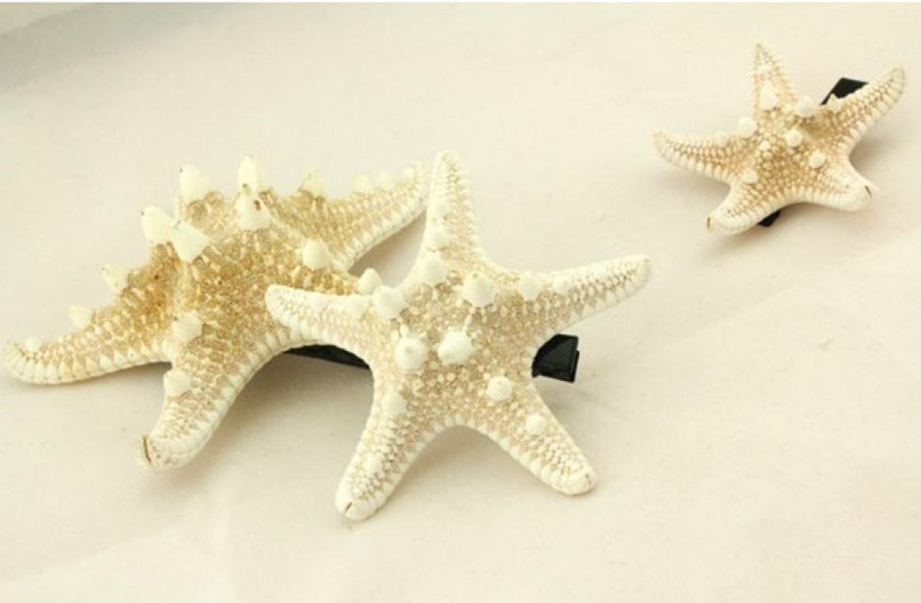 Alonea Hairdressing clips, Women Lady Girls Pretty Natural Starfish Star Beige Hair Clip – DIY Hair Styling (A❤️) by Alonea (Image #4)