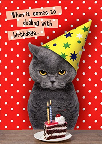 Dealing With Birthdays Cat  Oatmeal Studios Funny Birthday Card