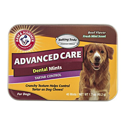 Care Tartar - Arm & Hammer Advanced Care Tartar Control Dental Mints For Dogs in Beef Flavor, 40 Count
