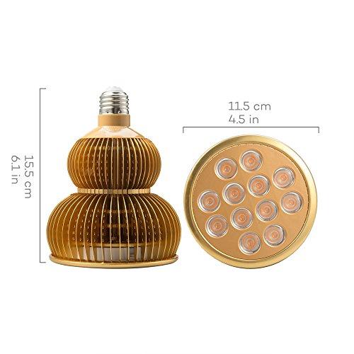 51uNtkW74NL - LED Grow Light Bulb, TaoTronics Full Spectrum Grow Lights for Indoor Plants, Grow Lamp, Plant Lights for Hydroponics, Organic Soil (All Wavelengths, FREE E26 Socket)