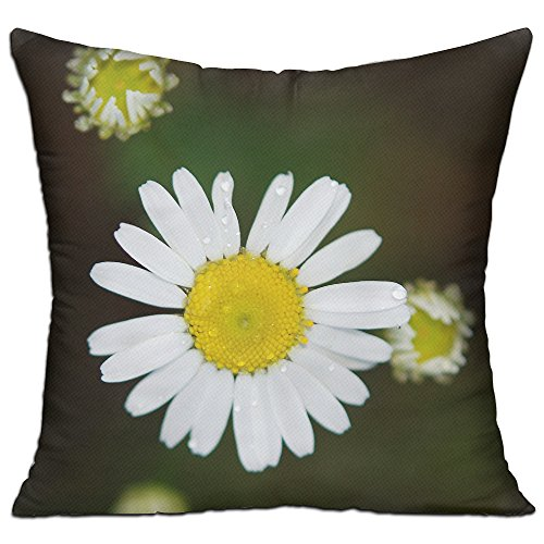 KKWODWCX Lovely Daisy Home Fashion Soft Canvas Polyster Throw Pillow Bolster Cushion Cover Square 18'' Decorative Pillowcase