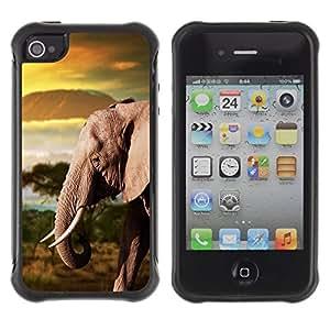 Suave TPU GEL Carcasa Funda Silicona Blando Estuche Caso de protección (para) Apple Iphone 4 / 4S / CECELL Phone case / / Trunk Elephant Africa Mountains Plain /