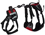 Total Pet Health Lift and Go Dog Lead, Small, Red