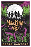 img - for Meddling Kids: A Novel book / textbook / text book