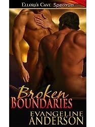 Broken Boundaries