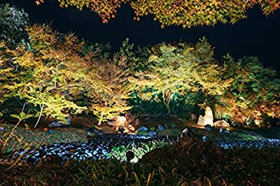 15W LED landscape light Outdoor Landscape Spotlights with Spike Stand 12V Low Voltage landscape lighting, IP66 Waterproof Garden Yard Trees Flags Pathway Lights Warm White(950LM, 3500K), 8pack