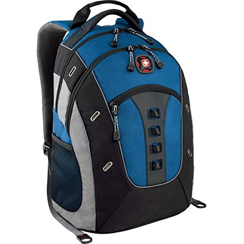 SwissGear Wenger Granite Computer Backpack