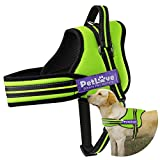 Cheap PetLove Dog Harness, Soft Leash Padded No Pull Dog Harness with All Kinds of Size (Large, Green)