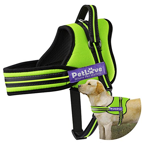 PetLove Dog Harness, Soft Leash Padded No Pull Dog Harness with All Kinds of Size (Large, Green) -