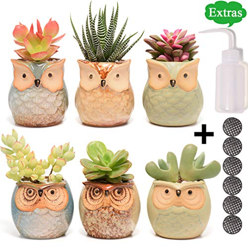 Succulent Planter, Cute Ceramic Owl Planters with Drainage, 2.5 Inch Small Flower Pot, Set of 6 Pots for ()